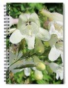Fox Glove Breadtonge Spiral Notebook