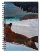 Fox Hunt 1893 Spiral Notebook