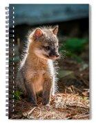 Fox Kit Spiral Notebook