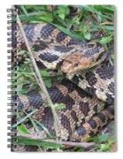Fox Snake Spiral Notebook