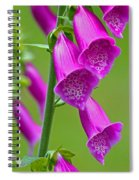 Foxglove Digitalis Purpurea Spiral Notebook