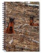Foxhole Mustangs Spiral Notebook