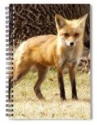 Foxy Momma Spiral Notebook