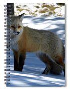 Foxy Shadows Spiral Notebook
