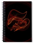 Fractal 17 Dude In A Circle Spiral Notebook