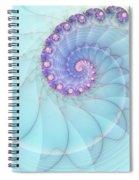 Fractal 17 Spiral Notebook