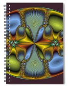 Fractal Art Egg Spiral Notebook