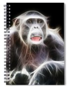 Fractal Chimp Spiral Notebook