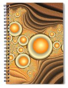 Fractal Eggs In The Depth Spiral Notebook