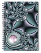 Fractal Jewellery Spiral Notebook