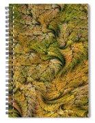 Fractal Leaf Mat-- 2 Spiral Notebook