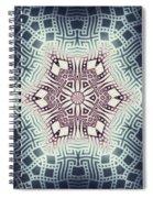 Fractal Snowflake Pattern 1 Spiral Notebook