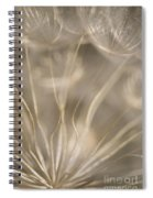Fragile Spiral Notebook