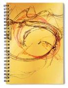 Fragile Not Broken Spiral Notebook