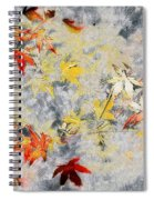 Fragments Of Fall Spiral Notebook