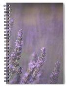 Fragrance Spiral Notebook