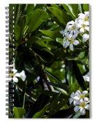 Fragrant Clusters Spiral Notebook