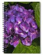 Framed Purple Blue Hydrangea Blossom Spiral Notebook