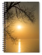 Framing The Golden Sun Spiral Notebook