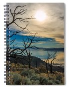 Frary Trail Trees Spiral Notebook