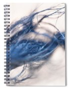 Frazzled Spiral Notebook