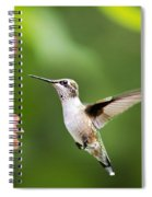 Free As A Bird Hummingbird Spiral Notebook