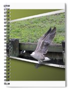 Free At Last Spiral Notebook