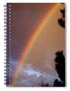 Free Rainbow  Spiral Notebook
