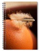 Free-range Eggs Spiral Notebook