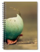 Free Spiral Notebook