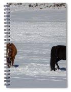 Free Spirits Spiral Notebook