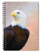 Freedom Flyer Spiral Notebook