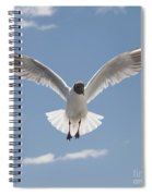 Freedom.. Spiral Notebook