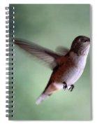 Freedom - Pillow Format Spiral Notebook