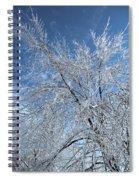 Freezing Rain ... Spiral Notebook