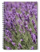 French Lavender Spiral Notebook