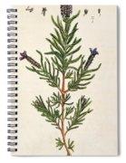 French Lavender Spiral Notebook
