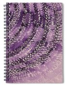 Frequency Increase Original Painting Sold Spiral Notebook