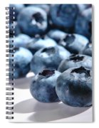 Fresh And Natural Blueberries Close Up On White Spiral Notebook
