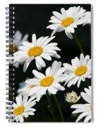 Fresh As Spiral Notebook