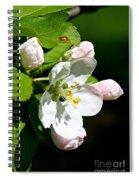 Fresh Fruit Blossoms Spiral Notebook