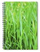 Fresh Grass Spiral Notebook