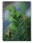 Fresh Growth Redwood Spiral Notebook