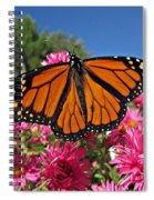 Fresh Monarch Butterfly Spiral Notebook