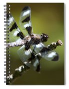 Fresh Morning Dragonfly Spiral Notebook
