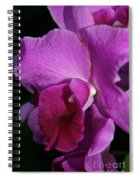 Fresh Orchid Spiral Notebook