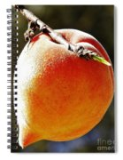 Fresh Peach Spiral Notebook