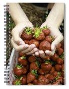 Fresh Picked Strawberries Spiral Notebook