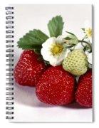 Gardenfresh Strawberries Spiral Notebook