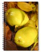Fresh Quince Spiral Notebook